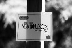 Verbo desnudo 14 - 1